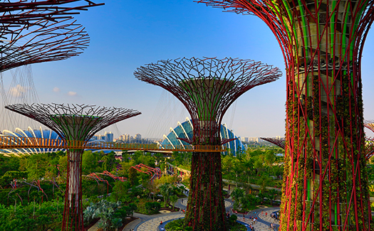 50 cheap things to do with your best friend in Singapore 10